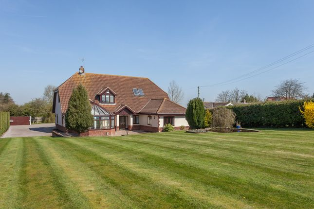 Thumbnail Detached house for sale in Back Lane, Burgh Castle, Great Yarmouth