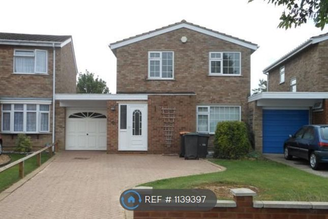 Thumbnail Detached house to rent in Arundel Drive, Bedford