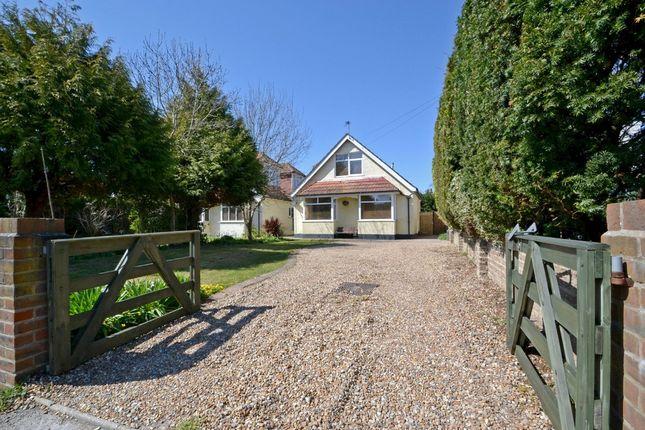 Thumbnail Property to rent in Firs Avenue, Felpham, Bognor Regis