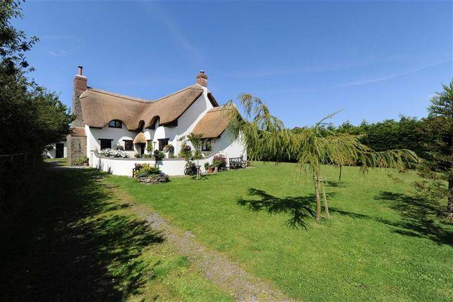 Thumbnail Detached house for sale in Bucks Cross, Bideford