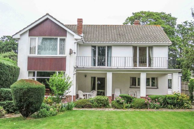 Thumbnail Detached house for sale in Hollow Lane, Hayling Island