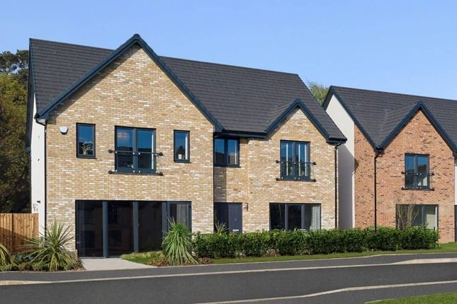 """Thumbnail Detached house for sale in """"Nasmyth Garden Room"""" at Low Coniscliffe, Darlington"""
