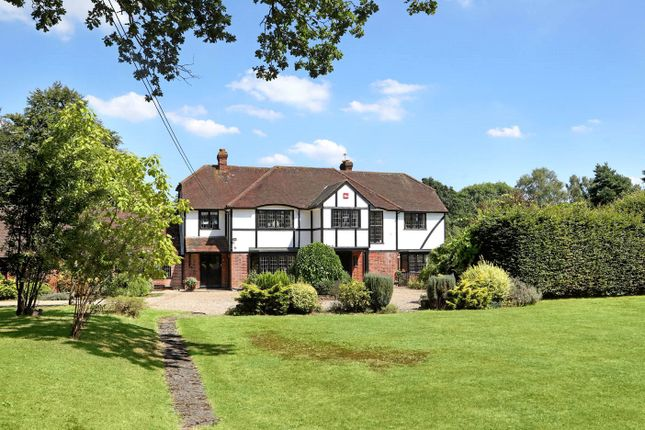 Thumbnail Detached house for sale in Shrubbs Hill, Chobham, Surrey