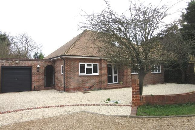 Thumbnail Bungalow to rent in The Drive, Datchet, Slough