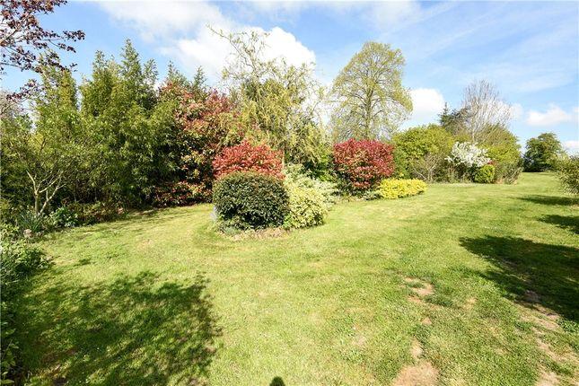 Garden of Pitney, Langport, Somerset TA10