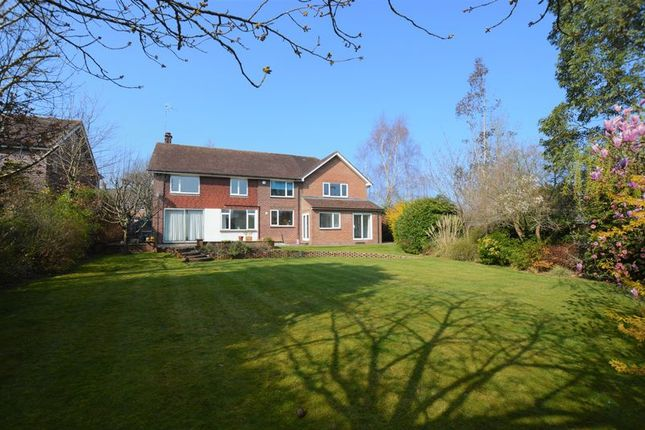 Thumbnail Detached house to rent in Woodfields, Chipstead, Sevenoaks