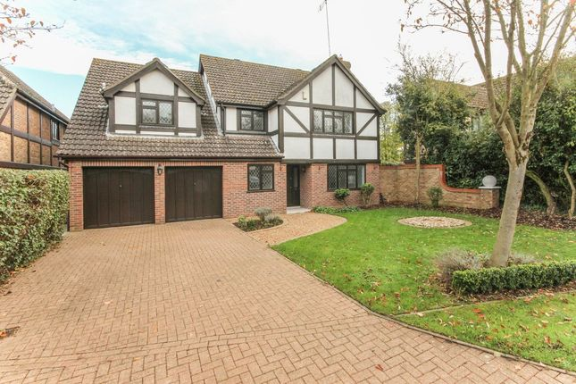 Thumbnail Detached house to rent in Forest End, Kennett, Newmarket
