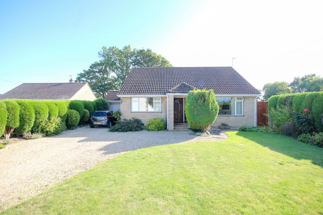 Thumbnail Detached house for sale in Leigh, Sherborne, Dorset