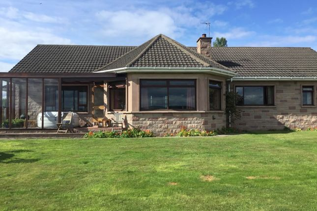 Thumbnail Detached bungalow for sale in The Glebe, Darklass Road, Dyke