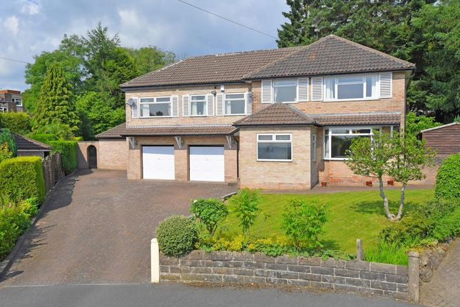 Thumbnail Detached house for sale in Slayleigh Avenue, Sheffield