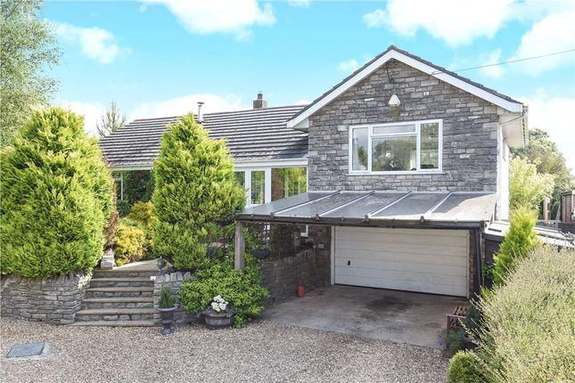 Thumbnail Detached house for sale in Chaldon Herring, Dorchester