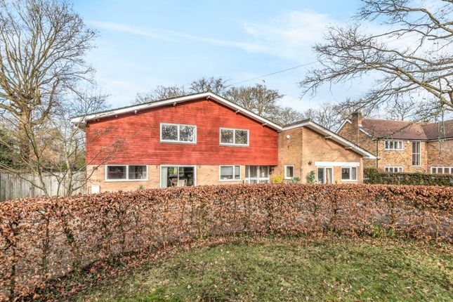 Thumbnail Detached house for sale in Loves Wood, Mortimer Common