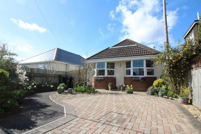 Thumbnail Bungalow for sale in Chalk Pit Lane, Wool, Dorset