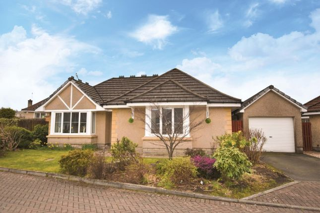 Thumbnail Bungalow for sale in King O'muirs Drive, Tullibody, Alloa