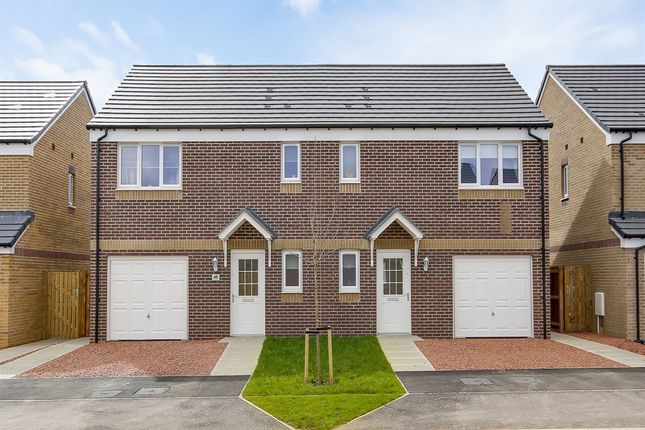 "3 bedroom semi-detached house for sale in ""The Newton"" at Dunlop Road, Stewarton, Kilmarnock"