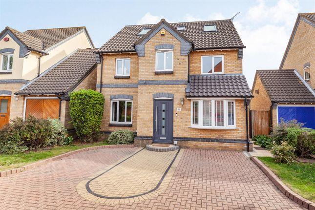Thumbnail Detached house for sale in Bartholomew Drive, Harold Wood, Romford