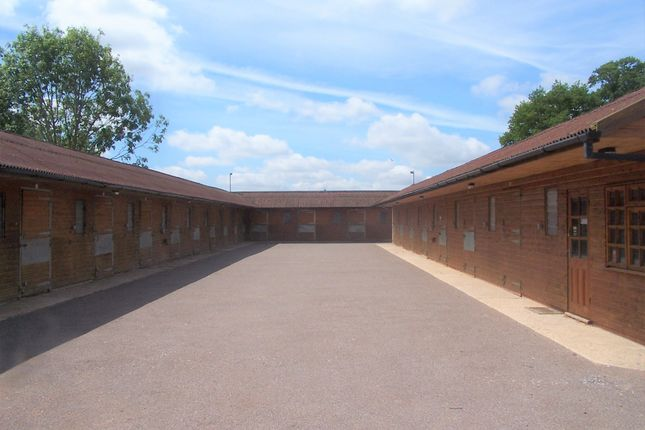 Thumbnail Equestrian property to rent in Upton, Oxfordshire