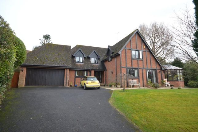 Thumbnail Detached house for sale in Bickwell Valley, Sidmouth, Devon