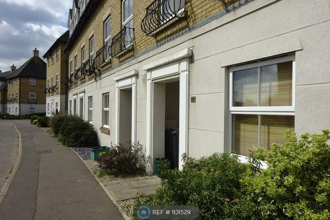 4 bed end terrace house to rent in Robin Crescent, Stanway, Colchester CO3