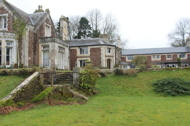 Thumbnail Terraced house to rent in Abbotsfield, Wiveliscombe, Wiveliscombe, Taunton