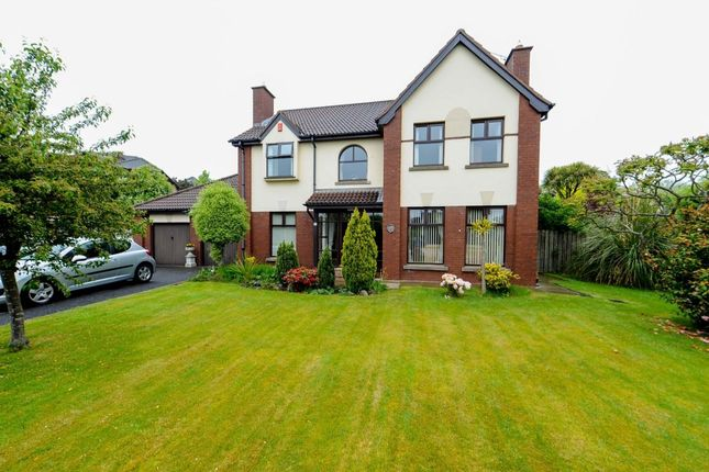 Thumbnail Detached house for sale in The Oaks, Newtownards