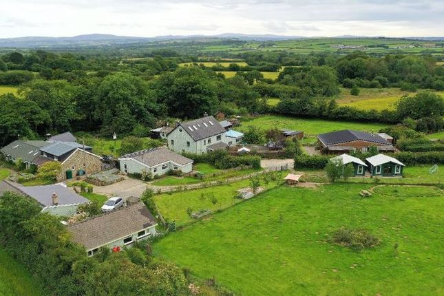 Thumbnail Detached house for sale in Tanygroes, Cardigan