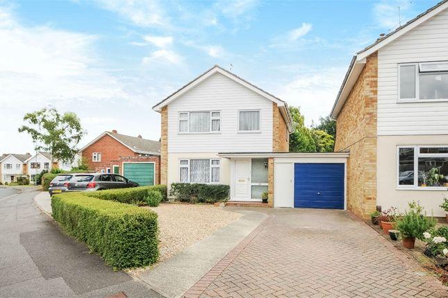 Thumbnail Link-detached house for sale in Packenham Road, Basingstoke