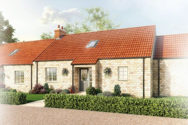 Thumbnail Bungalow for sale in Ashwood Close, Helmsley, York