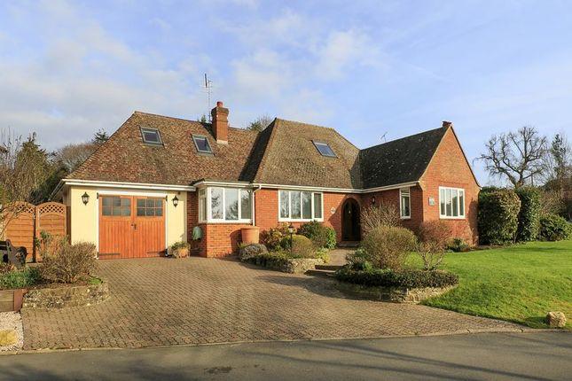 Thumbnail Detached bungalow for sale in Kevan Drive, Send, Woking