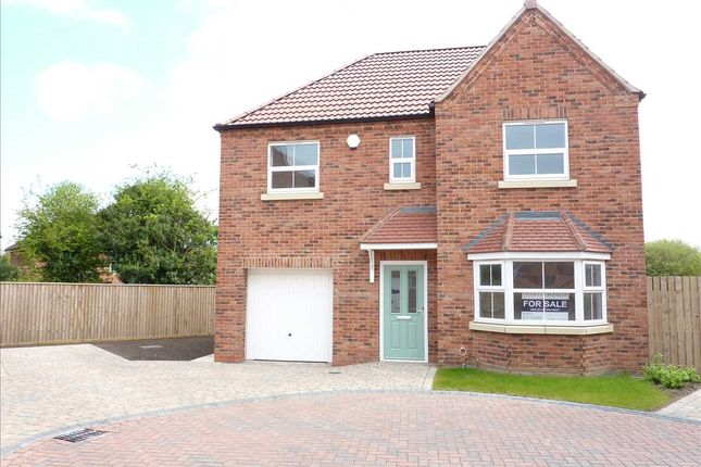 Thumbnail Detached house for sale in Acorn Close, Off Hornbeam Drive, Healing, Grimsby