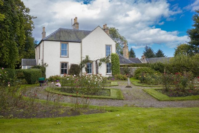 Thumbnail Detached house for sale in The Hollies, Kildary, Invergordon
