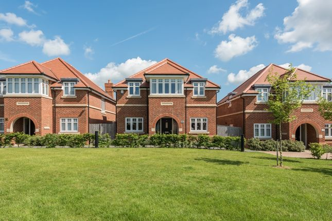 Thumbnail Detached house to rent in Kings Park, St.Albans