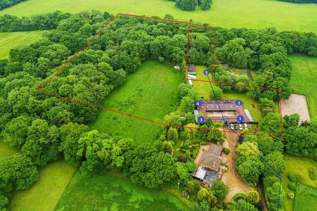 Thumbnail Detached house for sale in Partridge Lane, Newdigate