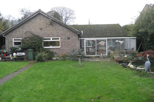 Thumbnail Detached bungalow for sale in East Road, Oundle, Peterborough