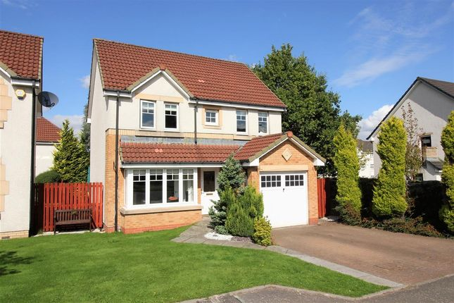 Thumbnail Detached house for sale in Tryst Park, The Inches, Larbert