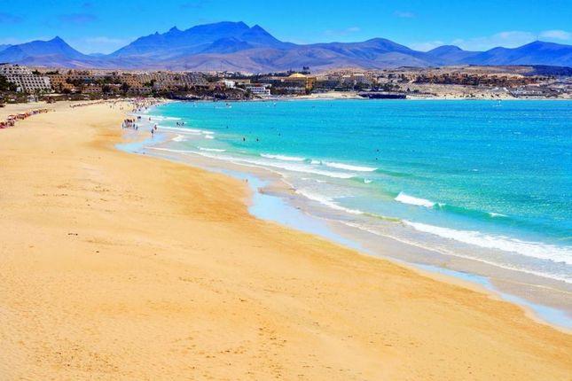 Thumbnail Studio for sale in Touristic, Touristic, Fuerteventura, 35660, Spain