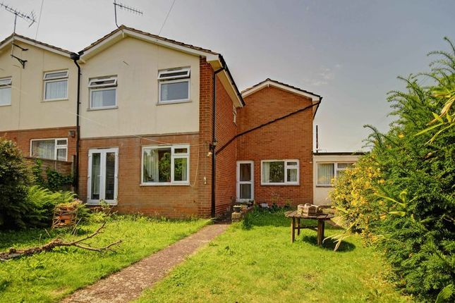 Thumbnail Terraced house to rent in Cedars Road, St. Leonards, Exeter