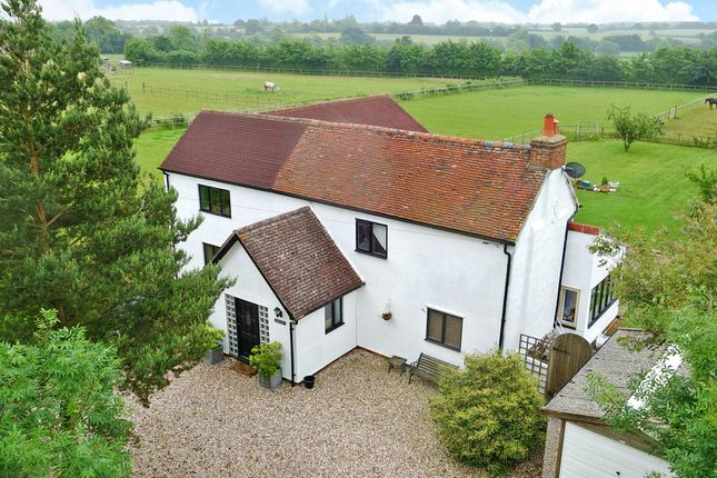 Detached house for sale in Essex, Great Sampford, Near Saffron Walden Equestrian Property