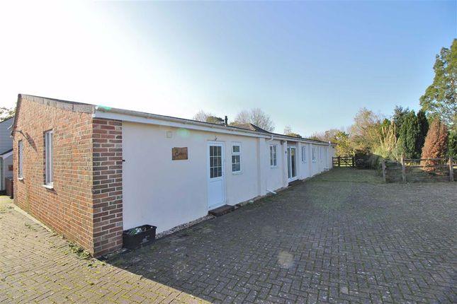 Thumbnail Detached bungalow to rent in Sway Road, Tiptoe, Lymington