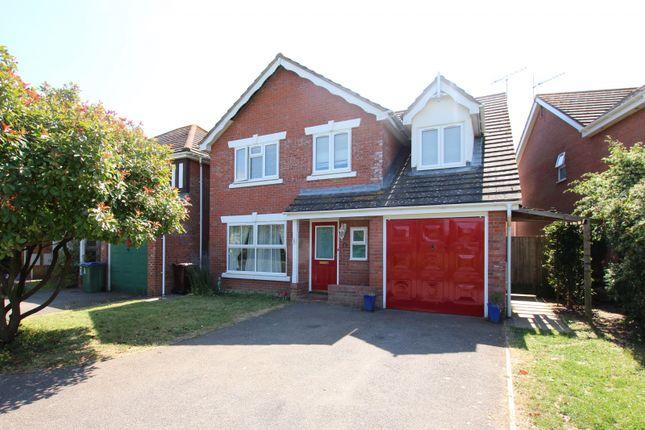 Thumbnail Property to rent in Primrose Close, Littlehampton