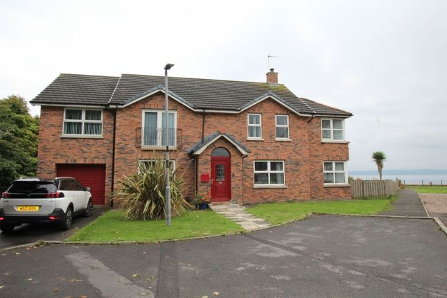 Thumbnail Detached house for sale in Loughview Village, Carrickfergus