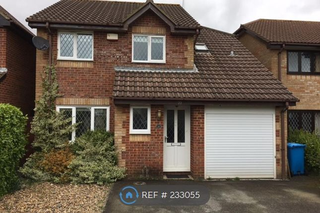 Thumbnail Detached house to rent in Isaacs Close, Poole
