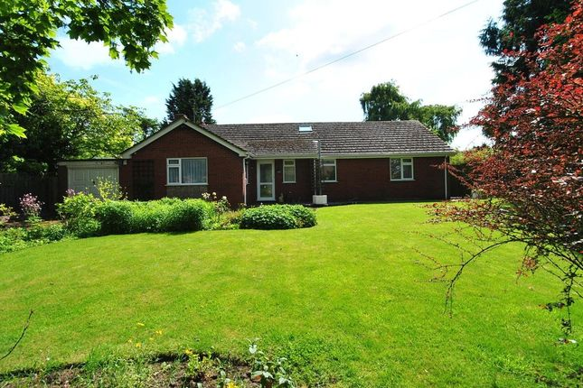 4 bed detached bungalow for sale in Moreton Street, Prees, Whitchurch