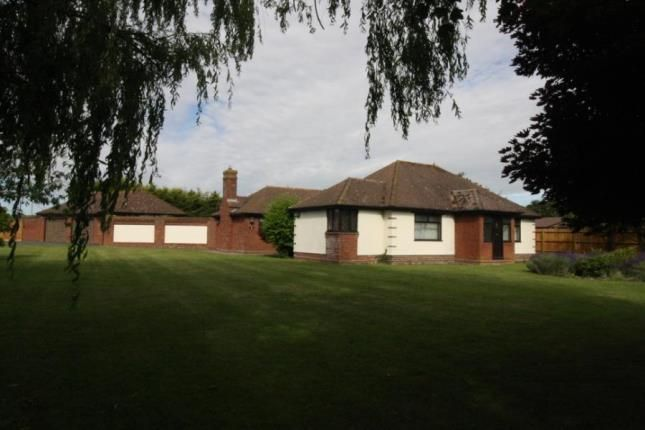 Thumbnail Bungalow for sale in Little Tey, Colchester