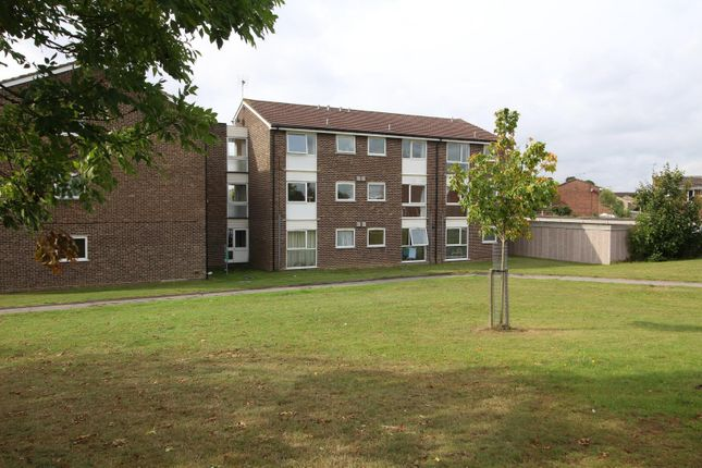 1 bed flat for sale in Cornflower Drive, Chelmsford, Essex CM1
