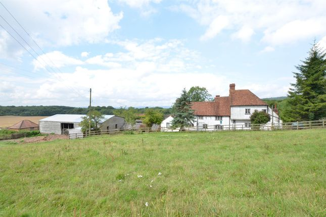 Thumbnail Equestrian property for sale in Harple Lane, Detling, Maidstone