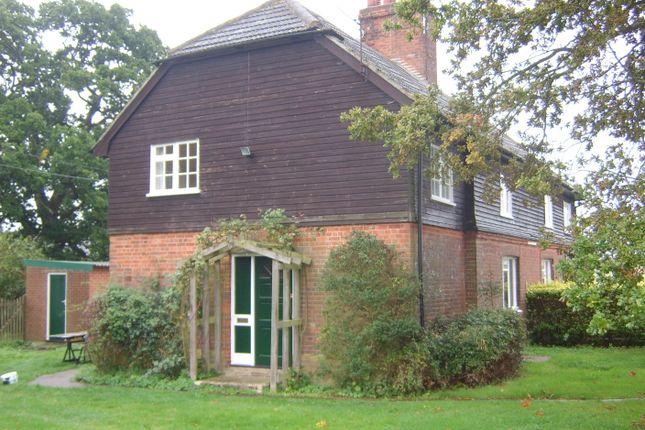 Thumbnail Semi-detached house to rent in Farnham