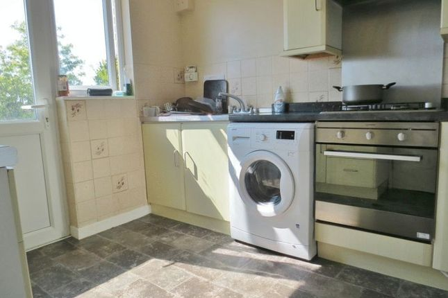 Thumbnail Semi-detached house to rent in Lynchet Close, Brighton