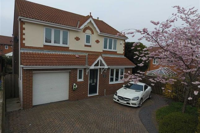 Thumbnail Detached house for sale in Beacon Glade, South Shields