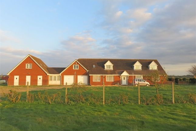 Thumbnail Detached house for sale in Luttongate, Sutton St Edmund, Spalding, Lincolnshire